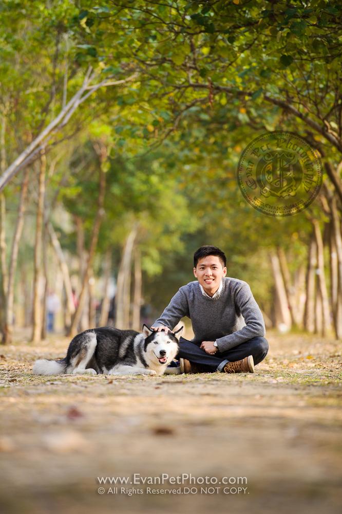 hong kong pet photographer, pet photography hong kong, 寵物寫真, 寵物攝影, 寵物攝影師, 寵物攝影服務, 專業寵物攝影, 專業戶外寵物攝影, 戶外寵物攝影, 戶外狗狗攝影, 攝影服務,poodle, poodle photography, 狗狗攝影, 香港寵物攝影師,南生圍,husky,husky photography, 雪橇犬