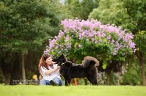 寵物攝影,寵物拍攝,專業寵物攝影,狗狗攝影,寵物寫真,寵物攝影服務,攝影服務,戶外寵物攝影,戶外狗狗攝影,專業戶外寵物攝影,香港寵物攝影,hong kong pet photographer, pet photography hong kong,寵物攝影師,香港寵物攝影師,dog photograph, hong kong dog photography, 唐狗, outdoor pet photography hong kong, 唐狗攝影,愉景灣