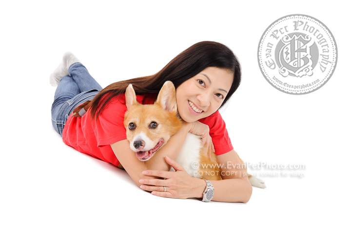 Dog Photography, Studio Dog Photography, 影樓寵物攝影, 哥基犬, corgi photography, 哥基犬攝影, 寵物攝影, 寵物影樓, 狗影樓, dog studio, 香港寵物影樓, hong kong dog studio, pet studio, 狗影樓,曲架犬, american cooker, cooker photography