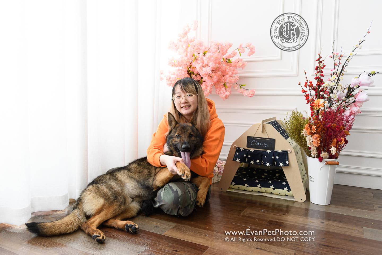 寵物攝影,寵物拍攝,專業寵物攝影,狗狗攝影,寵物寫真,寵物攝影服務,,香港寵物攝影,hong kong pet photographer, pet photography hong kong,寵物攝影師,香港寵物攝影師,dog photography, hong kong dog photography, dog studio, pet studio, dog photographer hong kong,德國狼狗,德國牧羊犬, German shepherd